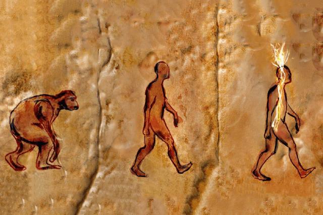 Evolution_Thumbnail