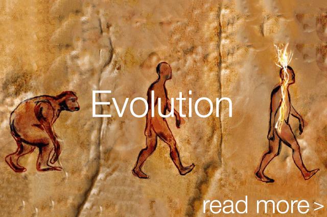 Evolution_Thumbnail_mobile