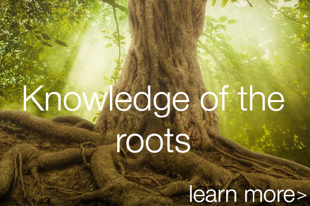 Knowledgeoftheroots_thumbnail_mobile.png
